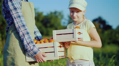agronomist : Woman farmer with daughter holding a box of tomatoes from their field