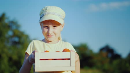 agronomist : Portrait of a child farmer. The girl is standing on the field, holding a small box with tomatoes