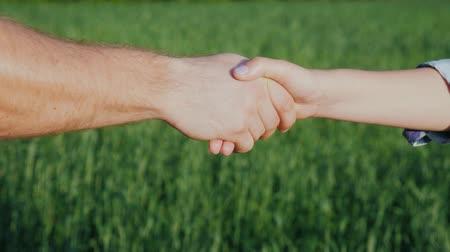 agricultores : A man farmer shakes hands with a woman. Against the background of a green wheat field Stock Footage