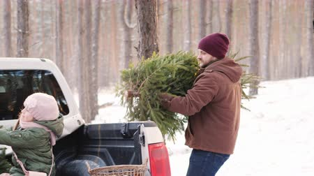zimní : A stylish dad with a beard loads a New Year tree in the cars body, on which a young wife and child are sitting
