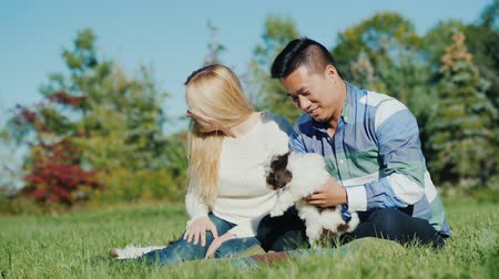 companionship : Asian man and Caucasian woman playing with puppies. Sit on the lawn in your backyard