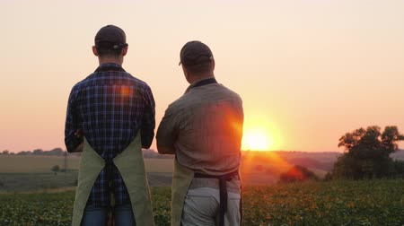 földműves : Two farmers - father and son are standing on the field, looking into the distance. Back view Stock mozgókép