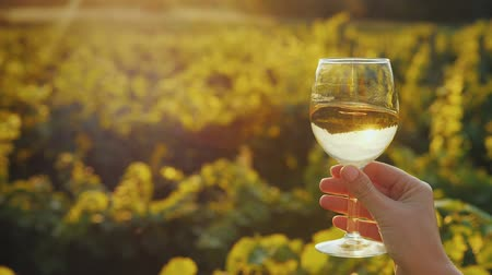 beautifully : Hand with a glass of white wine on the background of the vineyard, the setting sun beautifully illuminates the glass Stock Footage