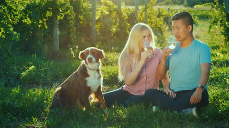 şarap kadehi : A young multiethnic couple sits near a vineyard, tasting wine. Next to them is their dog. Travel and Wine Tasting