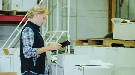 karbonatlı : A woman with a tablet holds inventory in a warehouse Stok Video