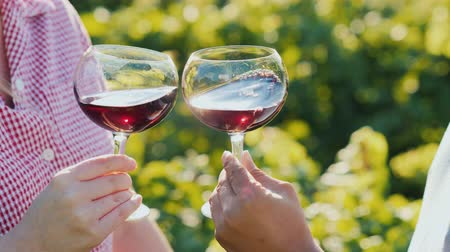 magánélet : Two hands with glasses of wine, slowly stir it. Wine tour Stock mozgókép