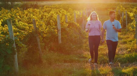 winogrona : A multiethnic couple in love with glasses of wine in their hands walking through a vineyard at sunset. Wine tour and honeymoon concept Wideo