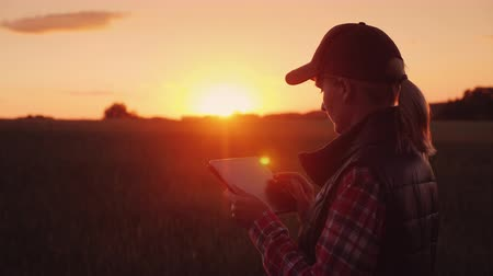 владелец : The owner of a small business - a woman works in the field, enjoys a tablet. Beautiful sunset