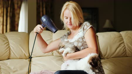 Care and care of pets. A woman dries a puppy with a hair dryer