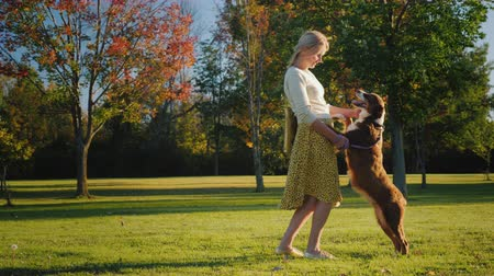 fiel : The dog owner plays with her sheepdog on a large lawn in the park. Holding her paws