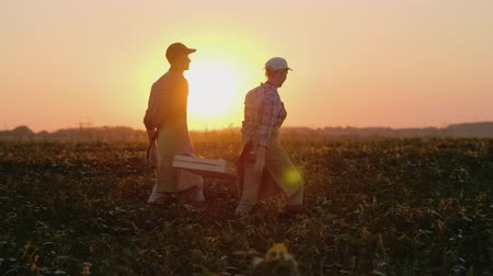 mais : Two farmers carry a heavy box with vegetables across the field Stockvideo