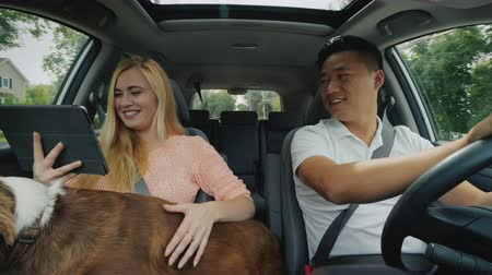 caráter : Cute girl with a dog in her arms and a tablet in the car shows the way to an Asian guy at the wheel, front view