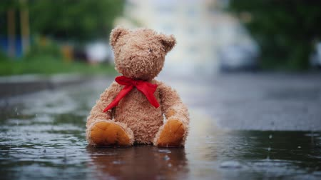 yağmur yağıyor : Lonely teddy bear sits in a puddle in the rain Stok Video