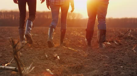 agronomist : Three farmers go ahead on a plowed field at sunset. Young team of farmers