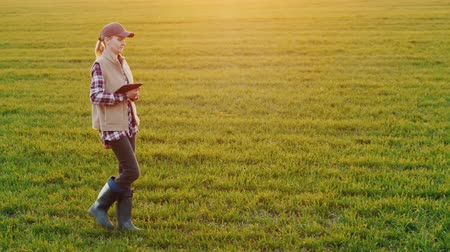agronomist : Side view of A young woman farmer walks along a wheat field carrying a tablet