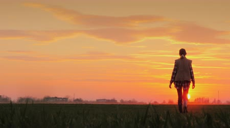пастораль : A confident farmer walks across the field towards the rising sun against the backdrop of picturesque clouds.
