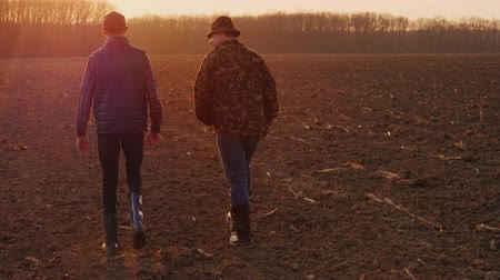 agronomist : Middle-aged farmer with his son walking across the field at sunset. Family Farm Concept Stock Footage