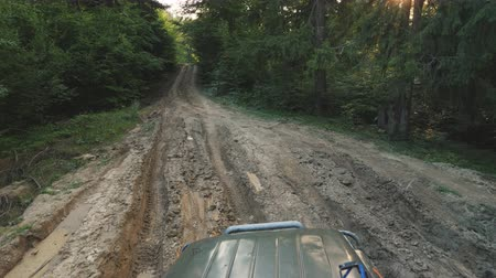 auto rally : First person view: Drive along a muddy dirt road in the forest. SUV trains in the woods Filmati Stock