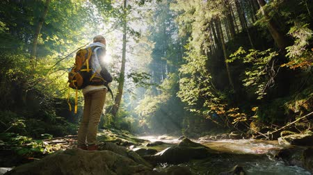 A woman with a backpack behind her admires the beautiful scenery in the forest.