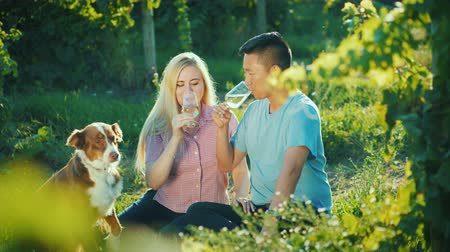 şarap kadehi : Happy couple tasting wine near the vineyard, their dog near them. Happy together good time concept