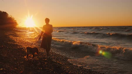 mindennapi : A young woman walks with a dog on the shore of Lake Ontario at sunset. Windy weather, beautiful sunset