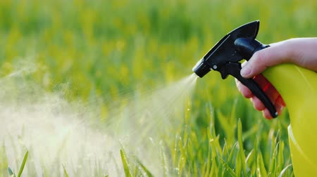 herbicides : Spray liquid from the hand sprayer onto the lawn. Garden care Stock Footage