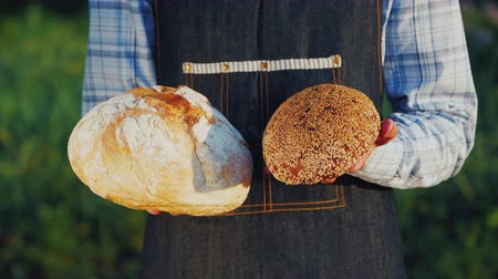 grain bread : A baker holds two loaves of light and dark bread