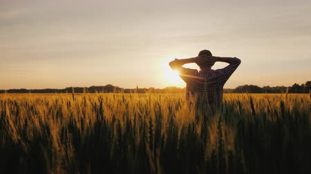 甘さ : A silhouette of a farmer, standing in a field of wheat, is admiring a beautiful sunset over his possessions. Small business owner concept