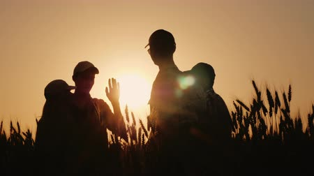 гордый : A group of young farmers makes the mark high five in a field of wheat. Success in agribusiness