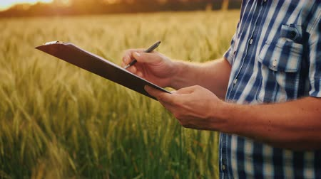 Side view of The farmer signs the document and shakes hands with a partner. On the background of a wheat field