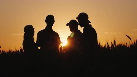gururlu : Silhouettes of a group of farmers arguing in a wheat field at sunset. A team of farmers