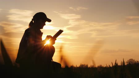 brotos : The farmer uses the tablet, working in his field at sunset Vídeos