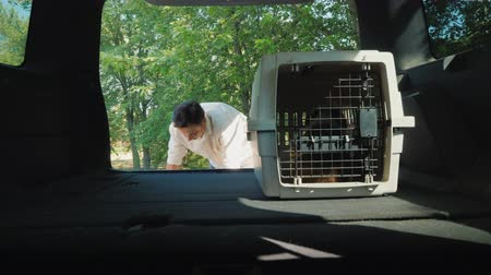 A man puts two cages with puppies in the trunk of a car. Transportation of pets in vehicles