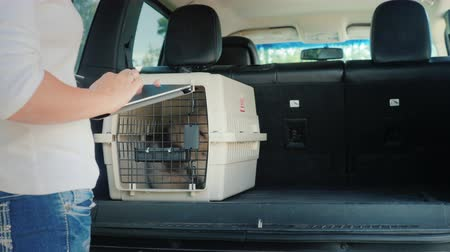 Shipping cells with dogs in a car trunk. Delivery and sale of live animals