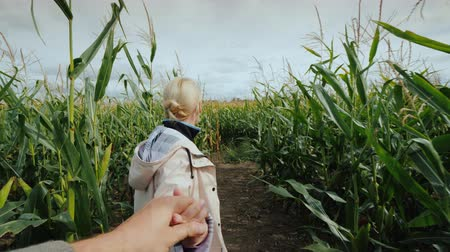 тюк : A young woman farmer invites you to visit the corn maze by following the hand behind her Стоковые видеозаписи