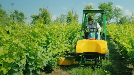 つる : Wilson, NY, USA, July 2019: Farmer on a small tractor with additional equipment processes the vine of the grapes with herbicides
