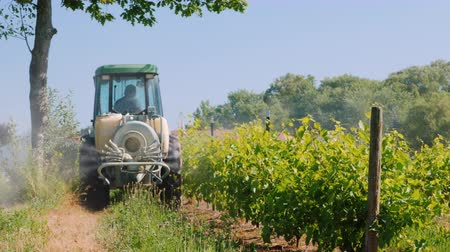 mechanization : Wilson, NY, USA, July 2019: Tractor with special equipment spray the vineyard with herbicides. Rear view