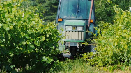 mechanization : Wilson, NY, USA, July 2019: Tractor with special equipment spray the vineyard with herbicides