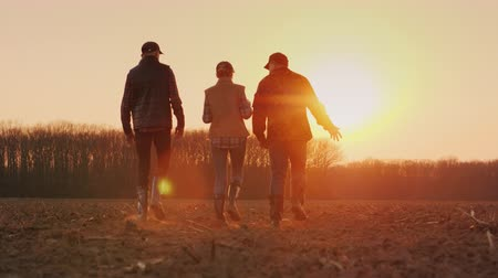 vitaal : A team of young successful farmers walks across the field at sunset
