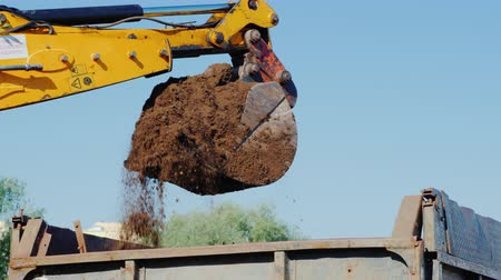 can : An excavator pours soil into the truck body with its bucket. Earthworks at a construction site