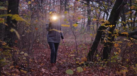 searches : A woman with a flashlight is walking through a dark forest, looking for something. Search for the missing child, get lost in the forest concept Stock Footage