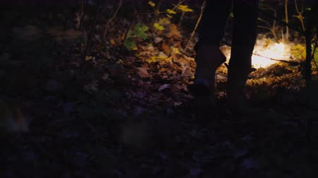 searches : Rear view of Legs of a woman in boots walking along a forest trail, lit by the light of a flashlight Stock Footage