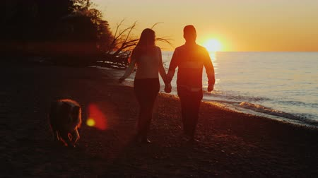 межрасовый : Silhouettes of a romantic couple. Walking with a dog near the lake or the sea at sunset Стоковые видеозаписи