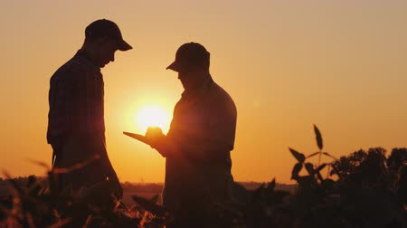köylü : Two farmers talk on the field, then shake hands. Use a tablet
