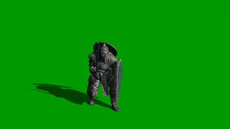 şövalye : 3d animation of medieval knight fighting with swords and shield isolated on green screen