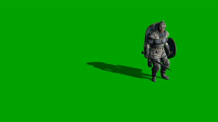 rycerz : 3d animation of medieval knight fighting with swords and shield isolated on green screen