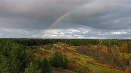 Rainbow over Forest in Autumn. Drone flies over forest and road in autumn. Far seen the river. Over the river a bright rainbow