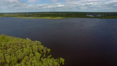 River in During Flood. The video is taken from the copter, flying over a large river in the spring during the flood. The trees have recently appeared on fresh leaves. The shore with shrubs flooded Stock Footage