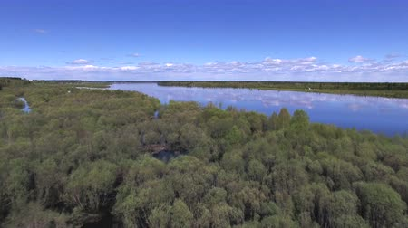 Flying over Trees and River in Spring. The video is taken from the copter, flying over a large river in the spring during the flood. The trees have recently appeared on fresh leaves. The shore with shrubs flooded