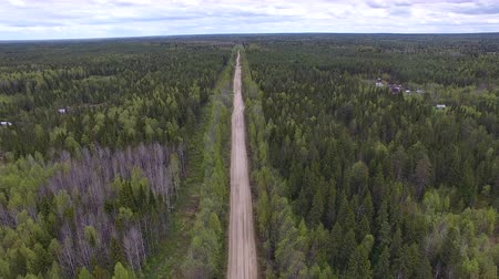 Flying over Forest Road. Video shoot with the copter flying over dirt road in the middle of the forest. The road rests on the horizon Stock Footage